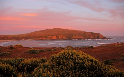 Bodega Bay Getaway • Fundraising Raffle for Takeo-bound Students